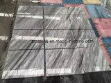 Italienische Carrara-graue Marmorfliese für Projekt