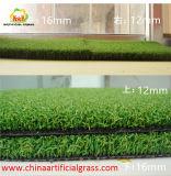 Grama verde ao ar livre e interna artificial para o golfe