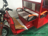 Leisure elettrico Tricycle con 4 Passenger Seats