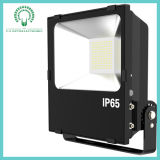 IP65 100W Beautiful Highquality Sliver/Black LED Flood Light