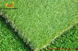 حديقة شعبيّة عشب اصطناعيّة في إسبانيا سوق