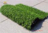 [روهس] صدق اصطناعيّة عشب حصير لأنّ يشجّر