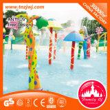 Equipamento do jogo da água da piscina dos acessórios do parque do Aqua