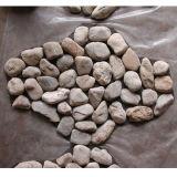 يشم حجارة قرميد رخيصة قرميد قراميد لأنّ حديقة يرصف