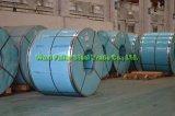ASTM 201 laminam a tira do aço inoxidável
