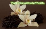 Vanillin порошка выдержки ванили поставкы фабрики естественный