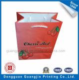 Luxe Colorful Paper Bag Panier avec poignée