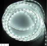 Luz de tira blanca del color LED (60LEDs/M) con la calidad SMD3528LED