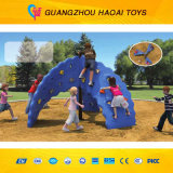 Qualitäts-neue Kinder, die Wand für Verkauf (A-05201, klettern)