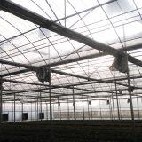 een landbouwSerre van de Raad van PC van de multi-Spanwijdte Venlo