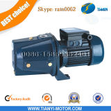 Auto-Priming 1HP Jet Water Pump de Jet-100p Jet Pumps
