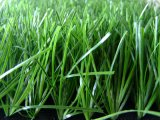 Football Field (MD001)のためのフットボールGrass Artificial Grass