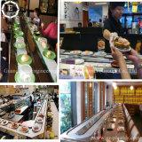 Catena di convogliatore di resistenza dei sushi di Upe della catena dei sushi del PE della muffa UHMW di usura