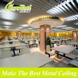 Belleza de aluminio del descenso del agua Pantalla de techo