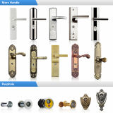 ホーム(M-S51)のための良質および安価な前ドア