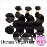 工場価格のRemyのバージンのマレーシアに人間の毛髪の編むこと