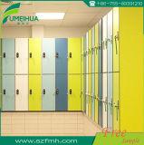 Kompaktes wasserdichtes HPL lamellenförmig angeordnetes Swimmingpool-Schließfach mit Prüftisch