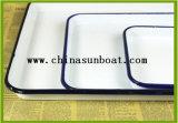 Bandeja médica del esmalte con la cubierta