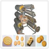 Macchine di fabbricazione di biscotti per il servizio dell'Africa sulla vendita calda