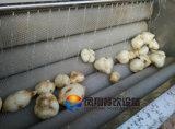 500 kg / H Arruela e descascador comercial industrial de frutas e vegetais