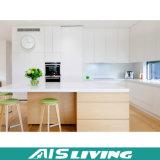 顧客用PVC膜の食器棚の家具(AIS-K050)