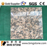Natürlicher Giallo Fiorito Granit für Bodenbelag-Fliesen/Eitelkeit/Gegenoberseiten