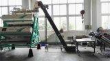 V máquina do classificador da cor do chá do projeto da estrutura em Hefei Anhui
