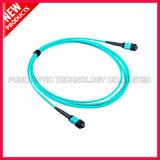 100G 24 Kabels van de Boomstam van de Vezel van Kernen OM3 MTP Mannelijke Optische