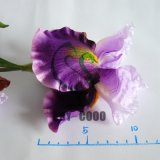 "36.6 "" Silk cru Decorative Iris Artificial Flower para Decoration"