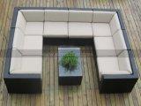 Mtc 114 새로운 호화스러운 큰 모형 옥외 등나무 가구 소파 세트