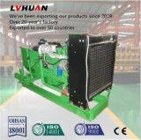 Низкий генератор природного газа Comsumption 50Hz/60Hz Cummins 200kw с высоким качеством