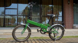 Низкая цена 250W Green Hidden Battery Folding Electric Bicycle