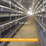 Gaiolas de bateria galvanizadas automáticas da galinha poedeira do frame de H/galinha da camada/ovo