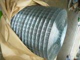 Rete metallica saldata galvanizzata prima della saldatura