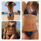 Swimwear верхней части ткани комфорта Swimsuit цветов & размеров женщин двухкусочный различный мягкий эластичный