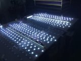 Hxd-RS-0333 LEIDENE Achter Lichte LEIDENE van Staven Lichte Doos Aangepaste LEIDENE AchterLichten