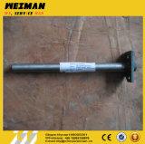 Assy Az9100230033 4110000264 dell'asta cilindrica della forcella dei pezzi di ricambio del rullo compressore di Sdlg Lgs820