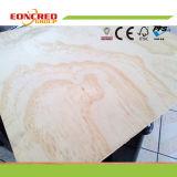 Madera contrachapada del pino/utilizado para la madera de los muebles/de la madera
