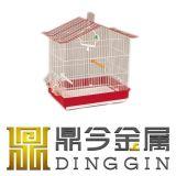 Vogel-Rahmen mit Balkon