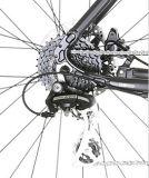 Leichtes Legierungs-Stadt-Fahrrad
