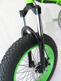 велосипед большой автошины силы 20inch тучной электрический