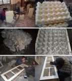Máquina reciclada de la bandeja del huevo del papel usado