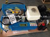 Compresor de aire de alta presión del equipo de submarinismo Mch6/Sh para el cilindro del aire