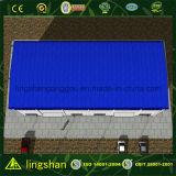 Lingshan 강철 구조물 저가 조립식 건축 창고 (QDLS-009)