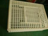 Huhn-Transport-Rahmen/Tierplastikumsatz-Kasten