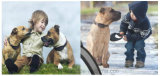 Inseguitore di GPS degli animali domestici con posizione reale del programma (EV-200)