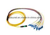 MPO-LC 12cores 광섬유 Patchcord