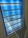 Scherm van het Insect van het Scherm DIY van het venster het Magnetische