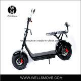 60V 800W1000W Harley 뚱뚱한 타이어 전기 자전거 /Citycoco /Seev /Wolf 뚱뚱한 타이어 전기 스쿠터 Harley