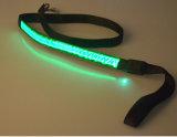 최고 판매는 LED 애완 동물 가죽끈을 불이 켜진다